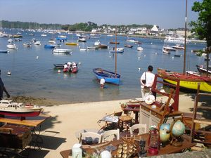 Puces_mer_sainte-marine