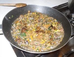 Girolles_omelette