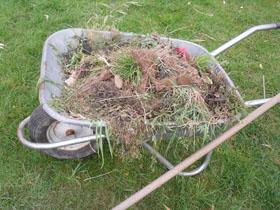 Le blogue jardin nettoyage de printemps en toute s curit for Nettoyage jardin printemps