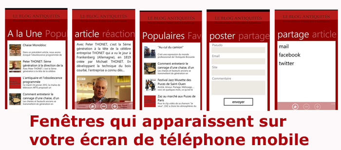 Apss_blog_antiquites_mobile