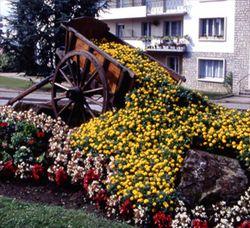 Vittel-Charrette-fleurie