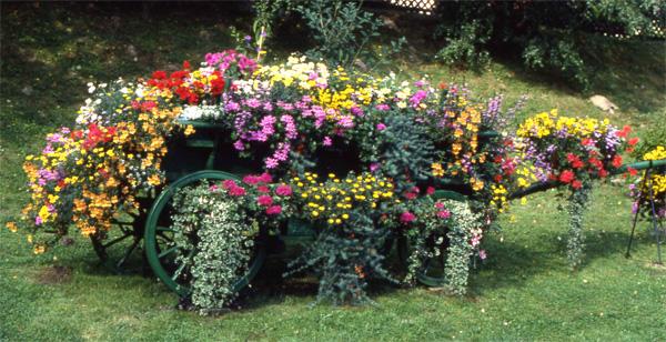 le blogue jardin charrettes fleuries. Black Bedroom Furniture Sets. Home Design Ideas