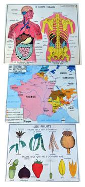 Rossignol_Planches-pedagogiques