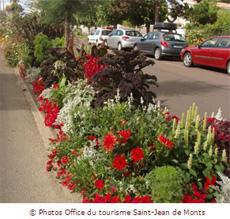 Fleurir_Saint-jean-de-monts