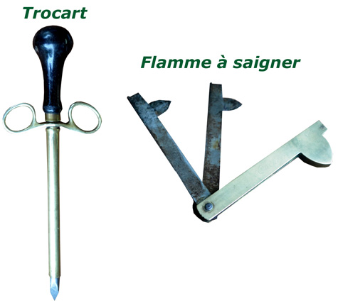 Instruments-chirurgicaux-veterinaire
