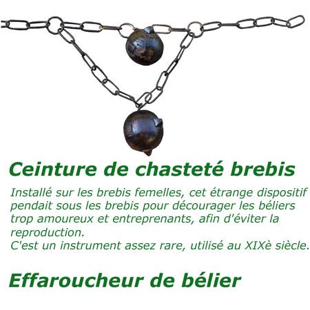 Ceinture-chasteté-brebis_effaroucheur-belier