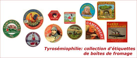 Tyrosemiophilie